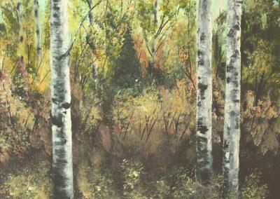Bjørkeskogen